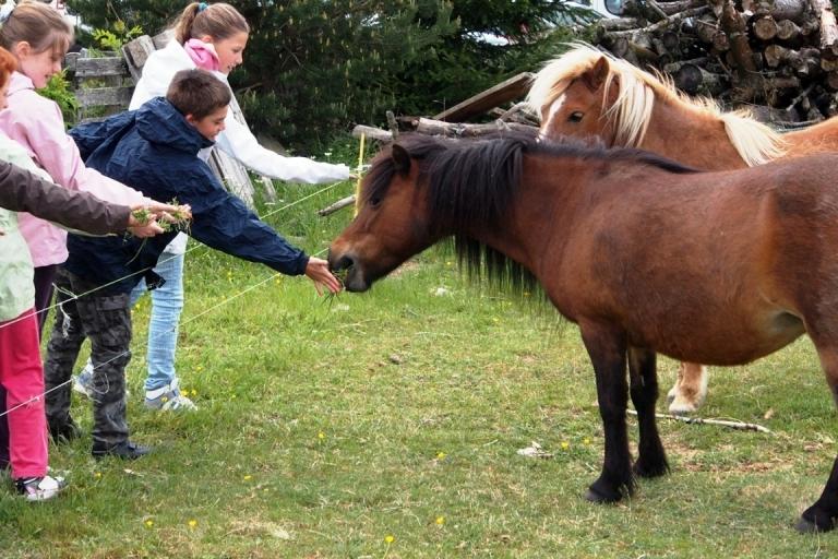 Naturo'sports Découverte des animaux de la région
